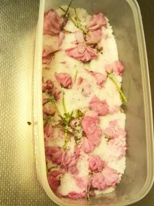 2013 八重桜の塩漬け 塩漬け3