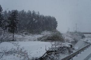 房総半島に雪が降る_3