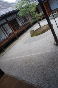 5月の京都_建仁寺_2
